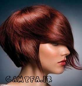 شخصیت شناسی جالب از روی موی افراد www.campfa.ir