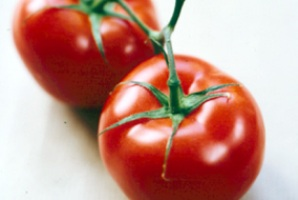 اگر می خواهید سلامت باشید این 5 ماده غذایی را هرگز فراموش نکنید - www.campfa.ir