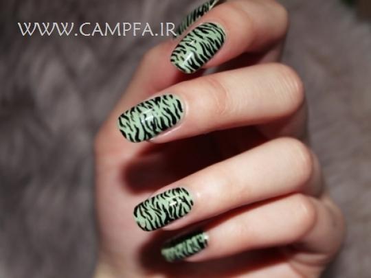 www.campfa.ir مدل های جدید لاک ناخن 92