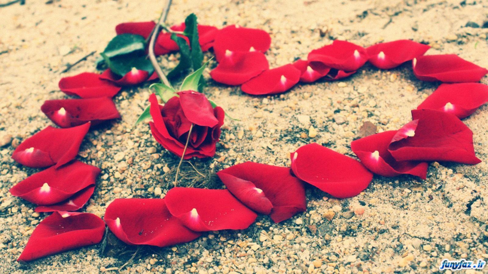 والپیپر قلب گل