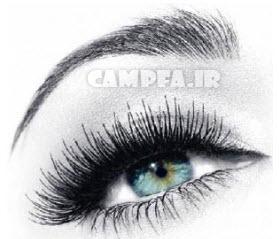 شخصیت شناسی جالب با نوع ابرو شما | www.campfa.ir