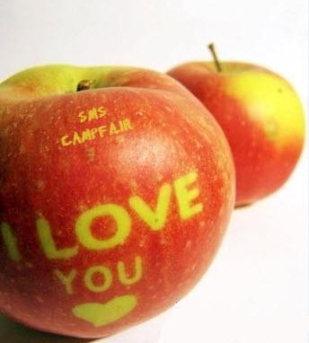 گلچین اس ام عاشقانه جدید www.campfa.ir