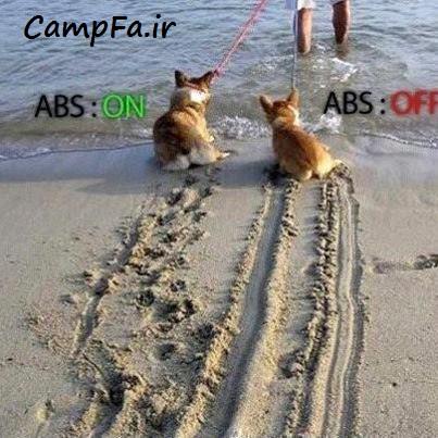 تفاوت ترمز abs و ترمز معمولی (عکس طنز)| www.campfa.ir