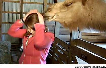 اس ام اس ضد دختر دی ۹۱| www.campfa.ir
