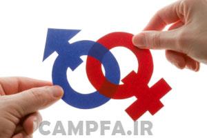 http://www.campfa.ir/wp-content/uploads/2013/12/btowl6bBb69LWacD.jpg
